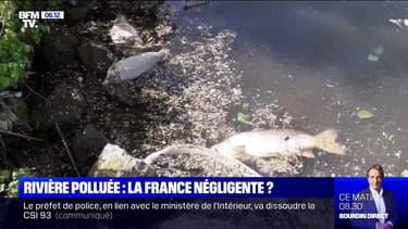 Pollution de l'Escaut: la France a-t-elle été négligente envers la Belgique ?