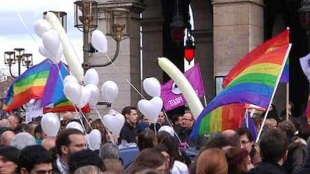 Manifestants en faveur du mariage homosexuel à Lyon, ce samedi