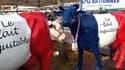 Les producteurs de lait parviennent à vendre leur lait plus cher sous le label FaireFrance.