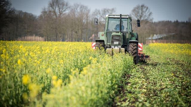 L'objectif officiel est d'avoir 15% de la surface utile agricole totale en bio fin 2022