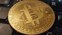 Les recherches sur Google du bitcoin ont chuté de plus de 80% par rapport à décembre