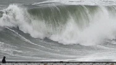 Les grandes marées ont fait trois victimes dans le Finistère (baie de Locquirec) : des retraitées qui étaient parties pêcher à pied les coquillages hier après-midi, jeudi. Elles ont péri malgré l'intervention d'une vedette et d'un hélicoptère.