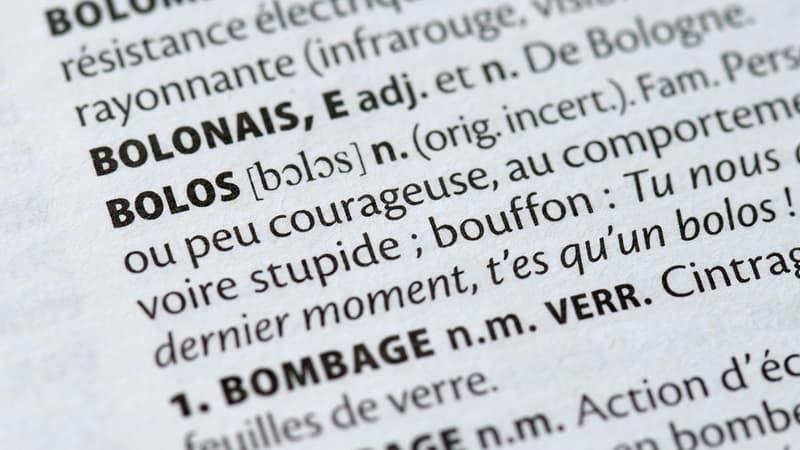 """De """"Covid-19"""" à """"racisé"""", 170 mots font leur entrée dans Le Petit Larousse"""