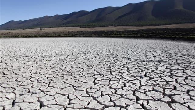 A San Isidro de Cienega, au Mexique. L'année 2011 a été la 11e la plus chaude de l'histoire malgré l'influence renforcée de La Nina, phénomène climatique marqué par une température anormalement basse des eaux de surface dans la zone équatoriale de l'océan