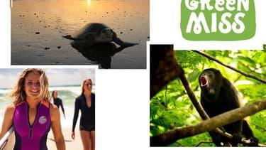 Le concours GreenMiss 2015 entre dans sa dernière ligne droite: la lauréate s'engage auprès d'associations de protection de l'environnement au Costa Rica.