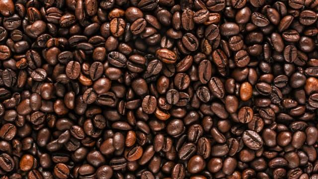 Le café et le thé constituent les principaux vecteurs alimentaires de la caféine.