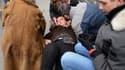 Dimanche dernier, Christine Boutin s'est évanouie après avoir respiré des gaz lacrymogènes lors de la manifestation contre le mariage pour tous à Paris.