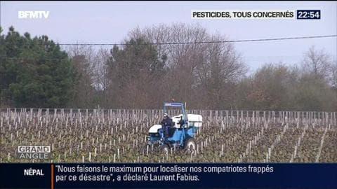 Pesticides : la famille d'un viticulteur décédé porte plainte