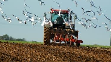 Un agriculteur tué à coups de marteau dans sa ferme à Allery (image d'illustration).