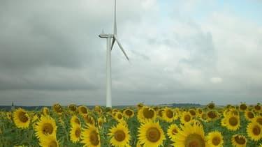 Le parc éolien français installé était de plus de 7.500 mégawatts fin 2012.