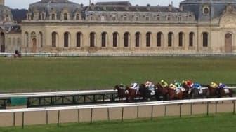 Le Quinté plus se dispute sur l'hippodrome de Chantilly