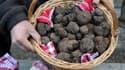 Une truffe peut facilement atteindre 1.000 euros le kilo.