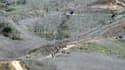 Le lieu où l'hélicoptère transportant Kobe Bryant s'est écrasé
