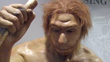 Un clone de l'homme de Néandertal, l'idée était séduisante, mais résultait d'une erreur de traduction !