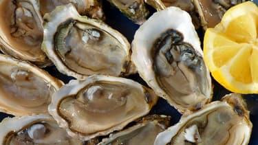 Dans la population d'huîtres élevées avec d'autres animaux marins le taux de survie a atteint 97% contre 75% dans la population témoin élevée seule.