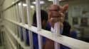 Un centre de détention de migrants en Arizona, en 2013 (photo d'illustration)