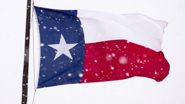 Un blizzard a causé d'importants dégâts au Texas le 26 décembre dernier, dont la mort de 15.000 vaches.