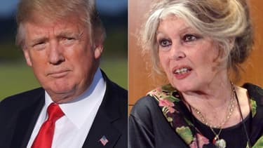 Donald Trump et Brigitte Bardot