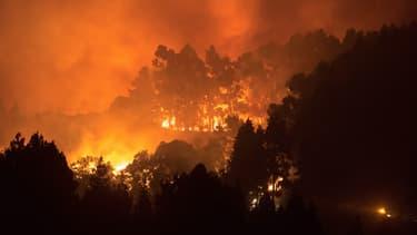 L'incendie sur l'île de Grande Canarie, samedi 17 août 2019