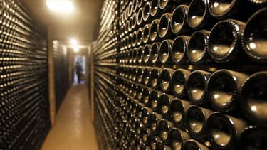 Les vins biodynamiques se font une petite place dans le catalogue de Cavissima. Un retour à la terre pour mieux préserver la planète.