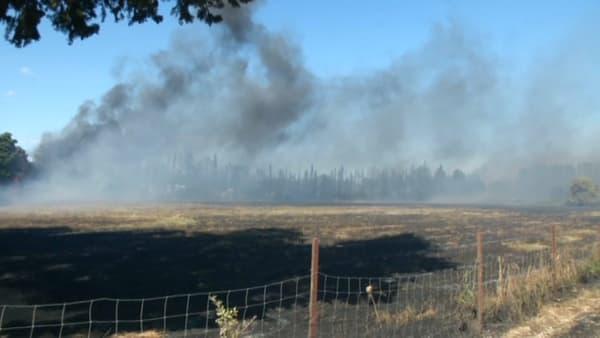 Selon le maire d'Argelès-sur-Mer, le feu est en passe d'être maitrisé