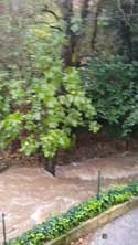 Crue de l'Issole à La Roquebrussane (Var) - Témoins BFMTV