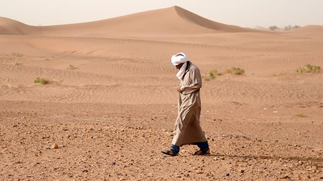 Dans le sud du Sahara marocain.
