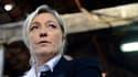 """Le Front national, dirigé par Marine Le Pen, rassemble 25% des intentions de vote aux européennes, selon un sondage CSA pour BFMTV et """"Nice-Matin""""."""