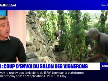 """Le président de la Fédération des vignerons indépendants du Rhône reconnaît que """"la transmission est encore compliquée"""""""