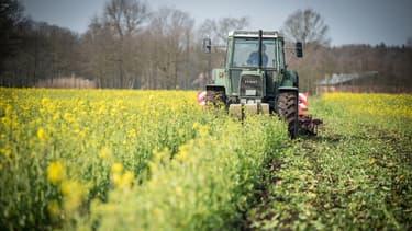 Grâce à l'épargne solidaire des Français, des agriculteurs bénéficient d'apport de trésorerie aux conditions de remboursement très souples.