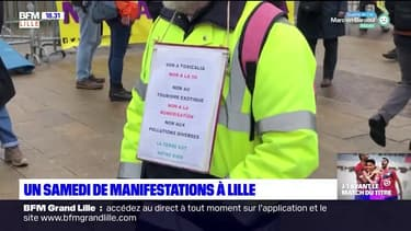 Assurance chômage, soutien à la Palestine, Tropicalia: un samedi de manifestations à Lille