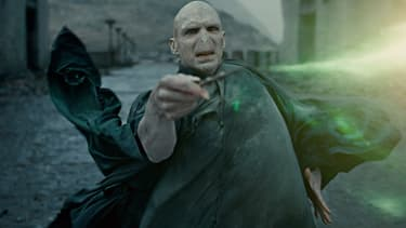Voldemort aura bientôt droit à son propre film