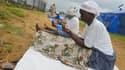 Des femmes libériennes prient devant un camp pour malades de l'Ebola (photo d'illustration).