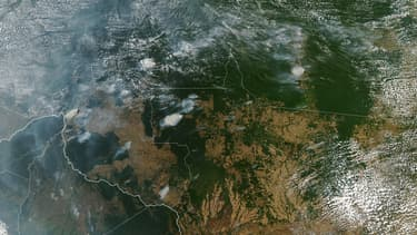 Image satellite de la forêt amazonienne le 11 août 2019.