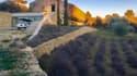 Cette maison se situe aux portes du Parc Naturel régional du Luberon.