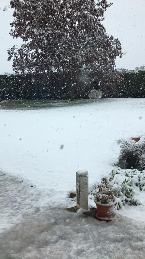 De la neige en Normandie un 30 avril.