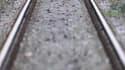 Le déraillement d'un train de marchandises samedi matin à Labouheyre, dans les Landes, a provoqué d'importants retards sur les rails dans le Sud-Ouest. En ce jour de départs en vacances de Pâques pour la zone C (Paris, Bordeaux, Créteil, Versailles), les