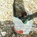 World CleanUp Day: des milliers de citoyens se mobilisent pour ramasser les déchets