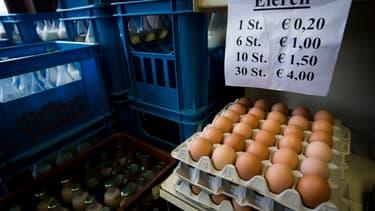 Des oeufs contaminés ont été importés dans plusieurs pays européens.