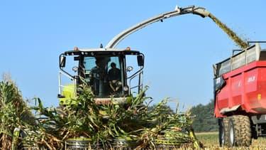 les députés ont voté en commission, dans la nuit de mercredi à jeudi, une série de mesures supplémentaires en faveur des agriculteurs, dans le cadre de l'examen du projet de budget pour 2019.