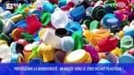 Protégeons la biodiversité : en route vers le zéro déchet plastique