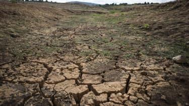 Face à la sécheresse, des mesures de restriction d'usage de l'eau ont été prises dans de très nombreux départements.