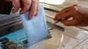 Les élections cantonales auront lieu les 20 et 27 mars prochain en France, dernier scrutin au suffrage universel direct avant la présidentielle de 2012. /Photo d'archives/REUTERS/Vincent Kessler