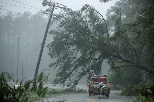 Une arbre effondré sur une ligne électrique de New Bern, en Caroline du Nord, le 14 septembre 2018.