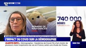 Mortalité en hausse, baisse de l'espérance de vie: l'impact du Covid-19 sur la démographie française