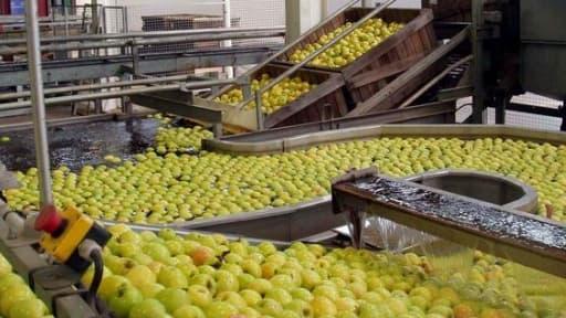 Le secteur de l'agroalimentaire pousse un cri d'alarme contre les taxes envisagées par l'Etat.
