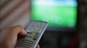Chaque année, les chaînes de télévision proposent des bêtisiers, devenu au fil des ans un incontournables des fêtes de fin d'année.