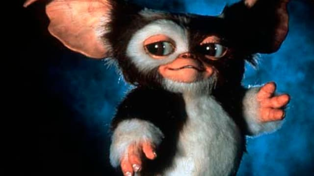 "Guizmo dans le film ""Gremlins 2""."