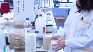 Cellectis a dû suspendre deux études de phase I sur son produit UCART123, médicament expérimental fondé sur des cellules T reprogrammées génétiquement.