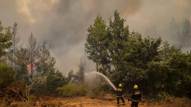 Des pompiers venus de Serbie en renfort combattent les feux sur l'île d'Eubée, en Grèce, le 10 août.